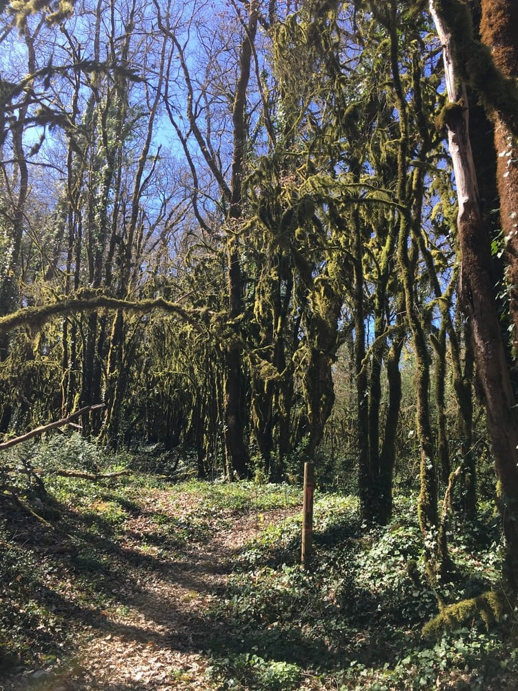 Randonnées Camping Dordogne Périgord noir