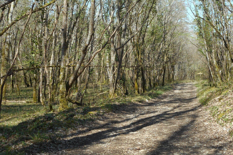 activités sportives près du camping Dordogne Le Garrit
